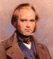 pictures of Charles Darwin as a younger man